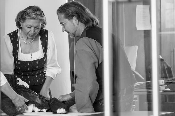 Two employees of the Trachten Information Centre examine a historical waistcoat that is spread out on a table in front of them. The employee (left in the picture) is wearing a patterned traditional dress and a white dirndl blouse underneath; opposite her, in profile view, you can see the upper body of her colleague, who is dressed in a shirt and waistcoat.